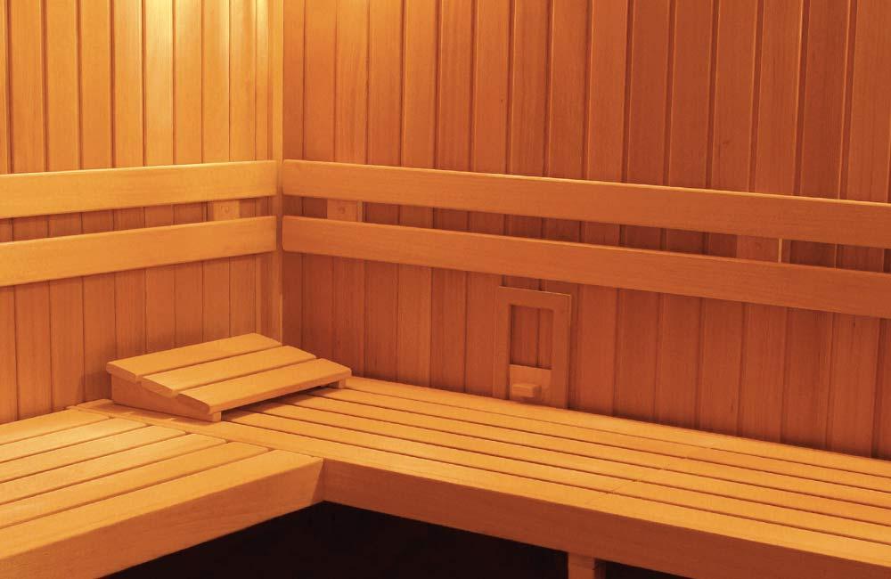 Sauna Economy Extra