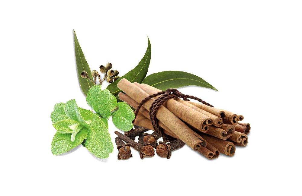 Vyberte si z několika druhů vonných esencí do sauny